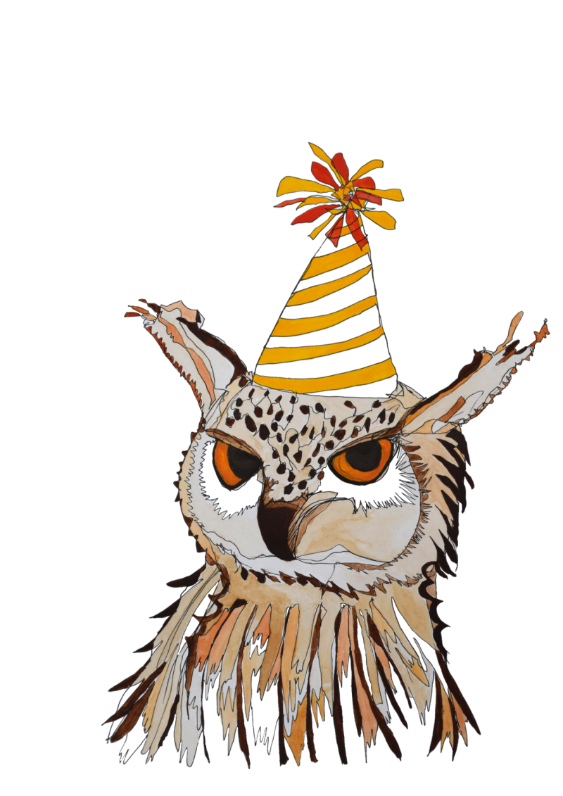 Watercolour Birthday Owl